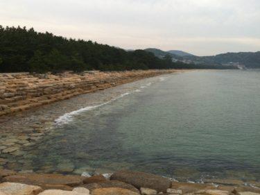 【生の松原海水浴場】福岡のおすすめ海水浴場